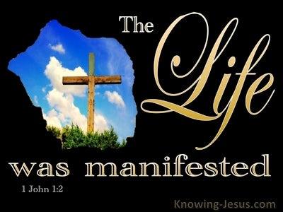 1 John 1:2