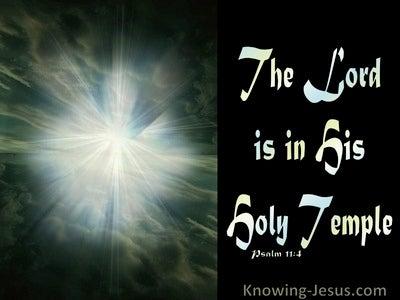 Psalm 11:4