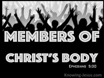 Ephesians 5:30