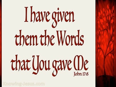 John 17:8