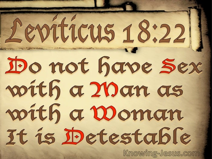 Image result for Leviticus 18:22