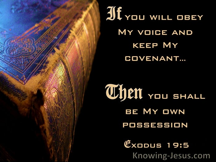 Image result for image of Exodus 19:5 voice