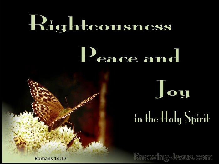 Image result for Righteousness, Peace and Joy Romans 14:7