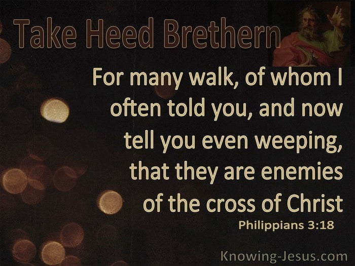 Image result for Philippians 3:18-20