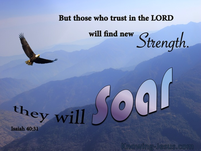 Image result for isaiah 40:31